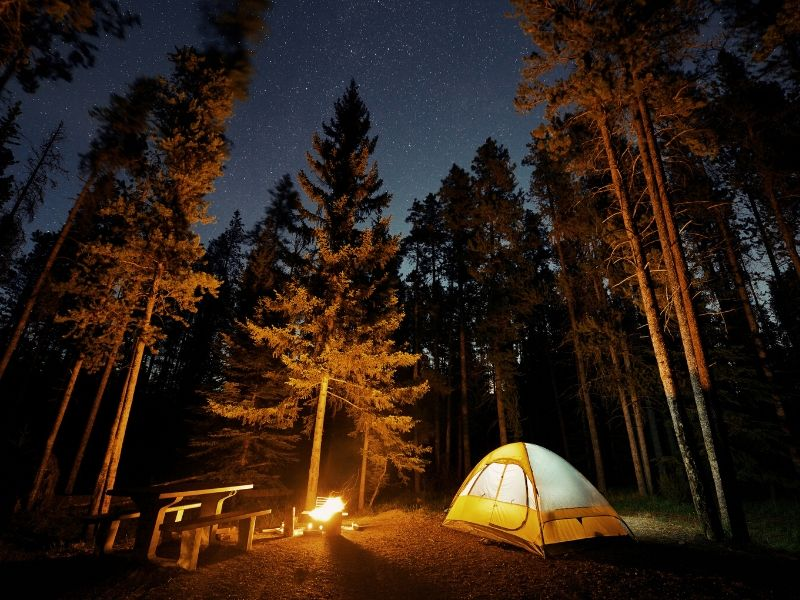 4 Reasons Why Camping is Good for the Whole Family